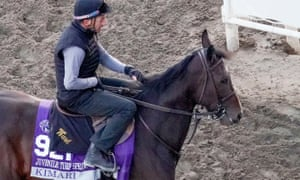 Kimari (seen here exercising in preparation for the Breeders' Cup last October) is being aimed at the Commonwealth Cup at Royal Ascot in June.