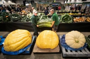 Two men carry a giant marrow