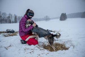 A sled race competitor with a dog