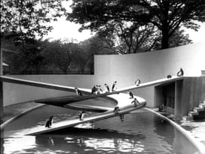 Penguin Pool, London Zoo, photograph by Frederick William Bond (1934).