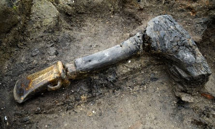 A bronze age socketed axe with a wooden handle, unearthed at Must Farm Quarry, Whittlesey.