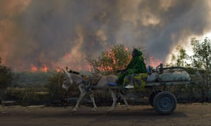 A woman on a cart passes a burning sugar cane field in Niono, Mali