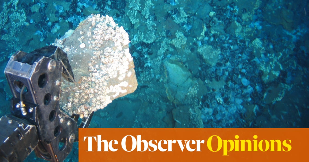 The Observer view on the pros and cons of deep-sea mining