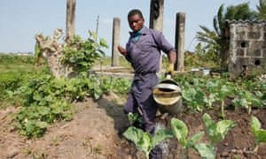 Mateus Mbazo, 23, irrigates his plot in the outskirts of Beira, Mozambique