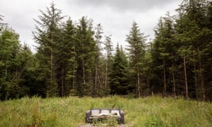 'It's like a wall around you', says Edwina Guckian of the spruce plantations in county Leitrim