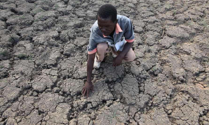 Zimbabwe's leadership has declared a 'state of disaster' due to widespread drought.
