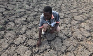 A Zimbabwean feels dried-up ground