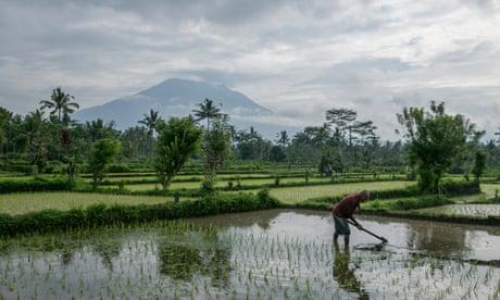 Bali volcano: 50,000 flee Mount Agung as tremor magnitude intensifies