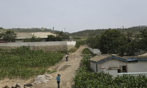 People walk between cornfields in South Hwanghae, North Korea in June 2015. Farmers and local officials say there has been almost no rain in this part of the country.