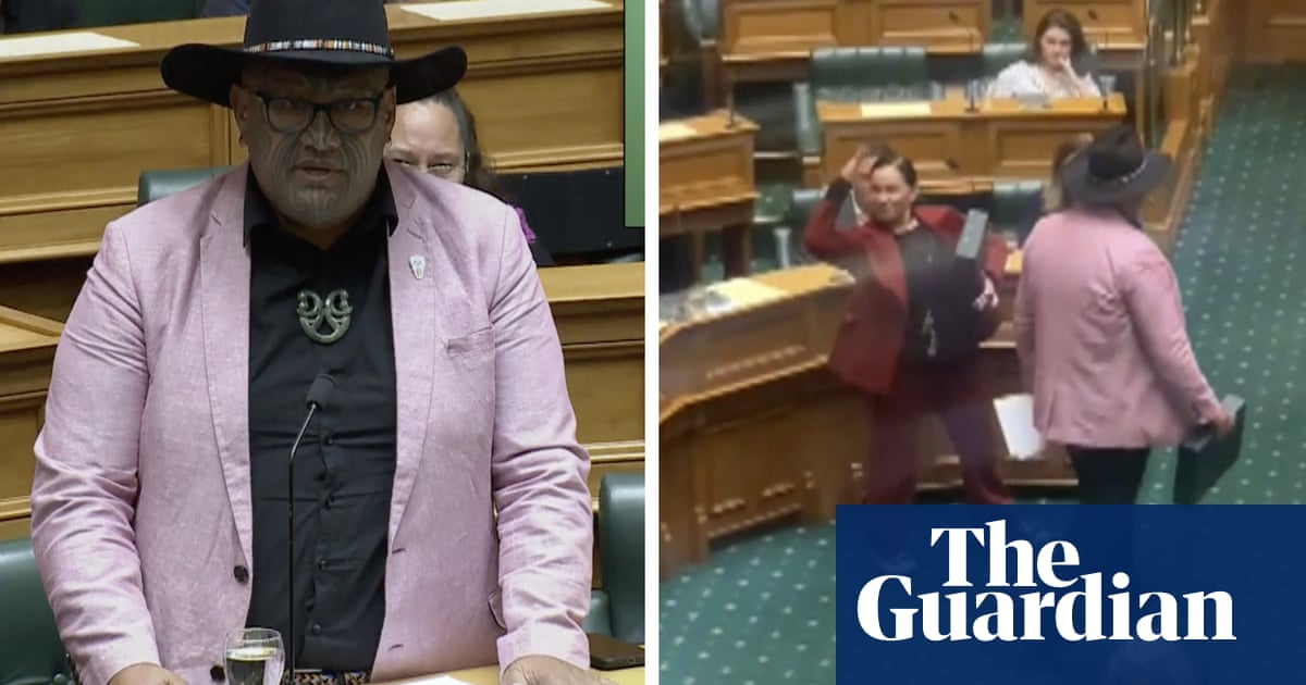 Māori party co-leader ejected from New Zealand parliament after performing haka – video