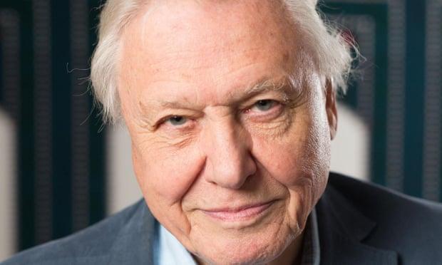 theguardian.com - Jim Waterson - David Attenborough to present Netflix nature series Our Planet