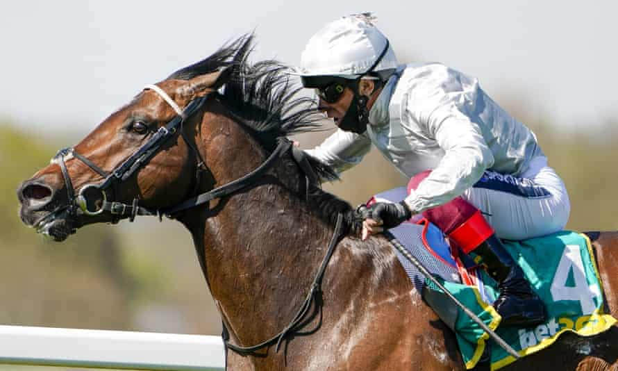 Palace Pier is the hottest favourite of the Royal Ascot meeting.