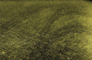 Sonar images from within Lamlash Bay in 2004 show marks created by scallop dredges.