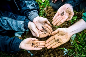 Earthworms wriggle across the hands of volunteers at a dig for worms at Westonbirt, the National Arboretum, during the Big Forest Find survey launch.