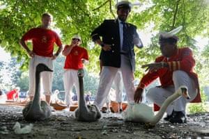 David Barber checks a swan