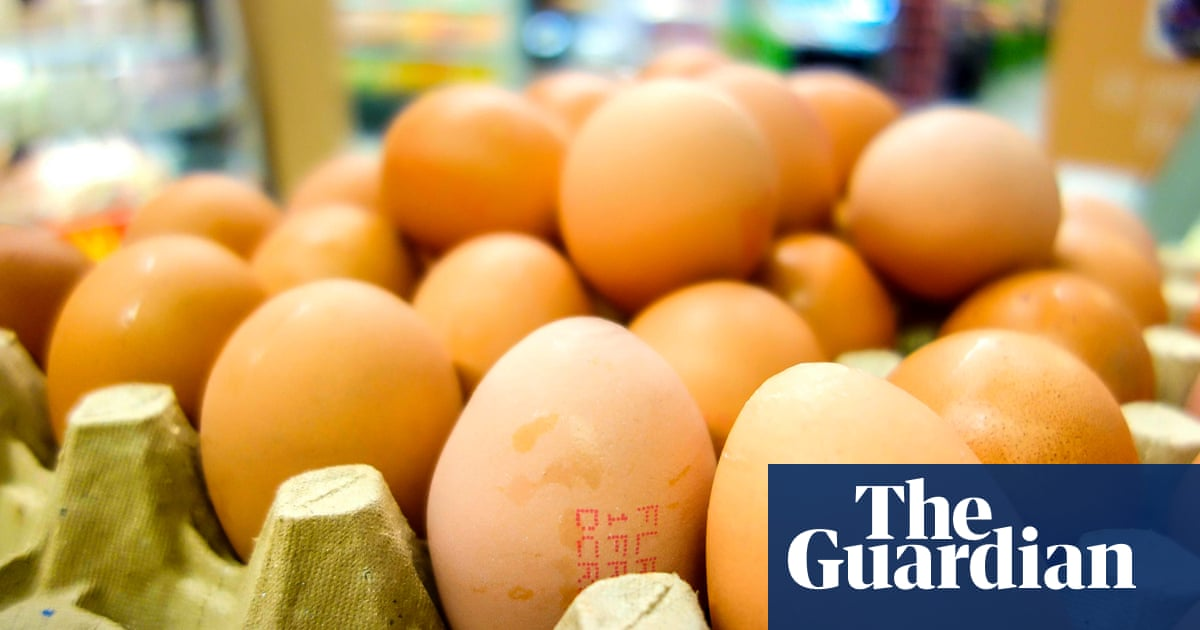 Egg Contamination Scandal Widens As 15 Eu States Switzerland And