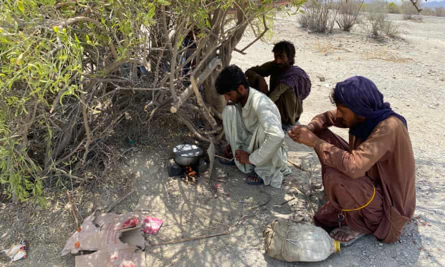 The fuel carriers make food for themselves while sheltering as best they can from the 40C heat.