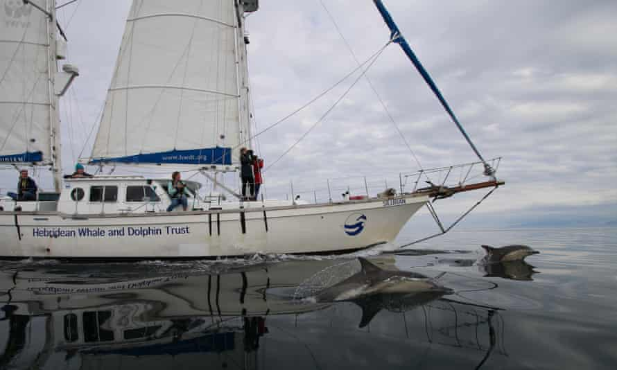 Silurian Research Expedition, Scotland