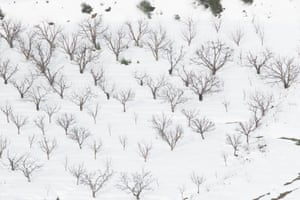 Snow outside of Beirut.