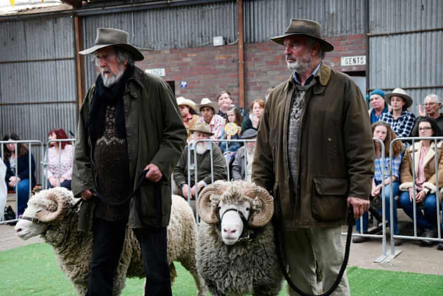 Michael Caton and Sam Neill and some sheep in Rams.