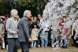 Japan's Emperor Akihito and Empress Michiko admire the blossoms at Kyoto Gyoen national garden in Kyoto