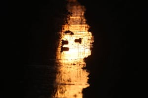 Ducks move down a small stream at sunset near Gretna Green in the Scottish Borders, UK
