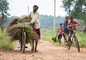 Ghatbarra resident Manoj Kumar Yadav transports a crop of rice.
