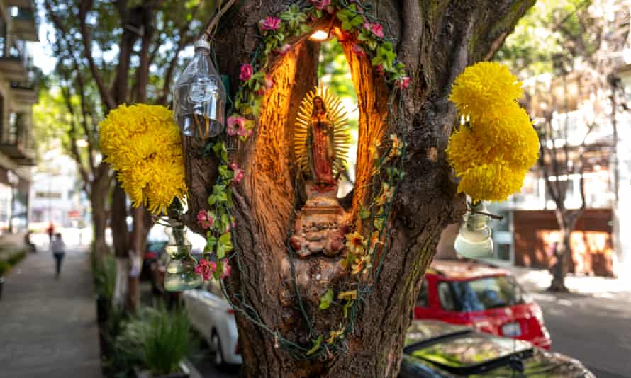 A colourful shrine inside a carved hole in a tree on a street.