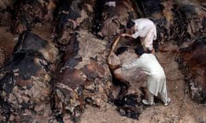 men near pile of cow hides