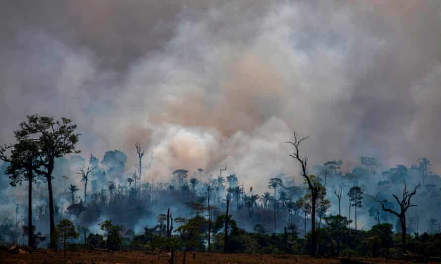 Forest fires in Altamira, Pará state, Brazil.