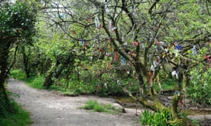 Votive offerings on a tree at Madron Holy Well Cornwall England UK GBVotive offerings on a tree at Madron Holy Well, Cornwall