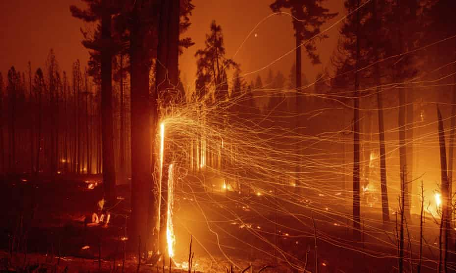 In this long exposure photo, embers fly from burning trees as the Caldor Fire grows east of Sly Park, California.