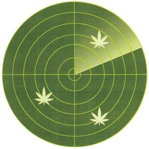 weedmaps illustration - radar