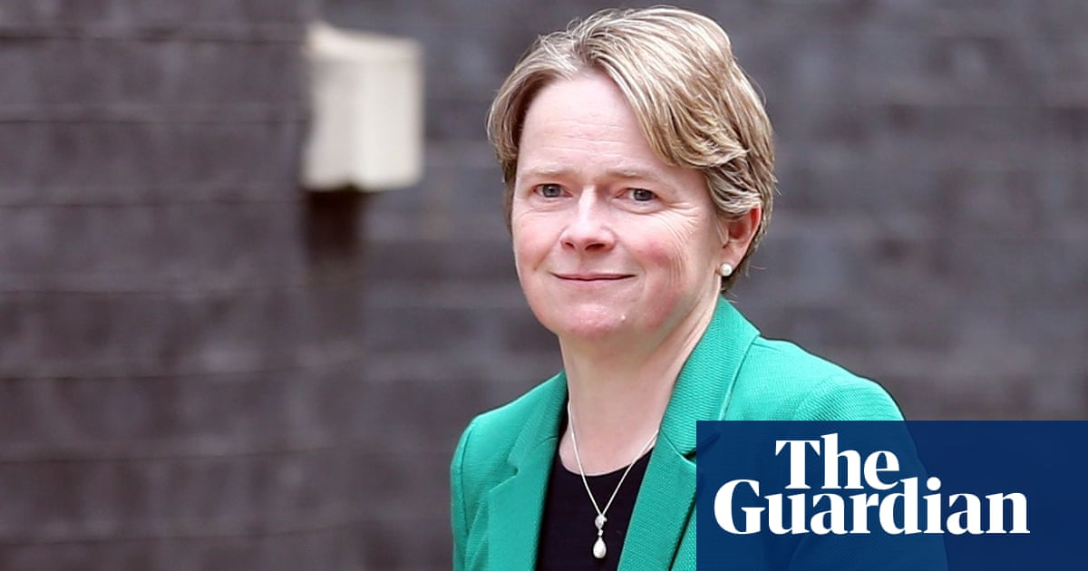 Dido Harding to step down as chair of NHS Improvement