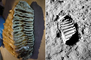 A mammoth molar, left, and a footprint from Nasa's Apollo 11 lunar mission.