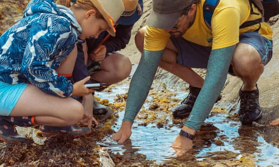 Two children and an adult rock-pooling