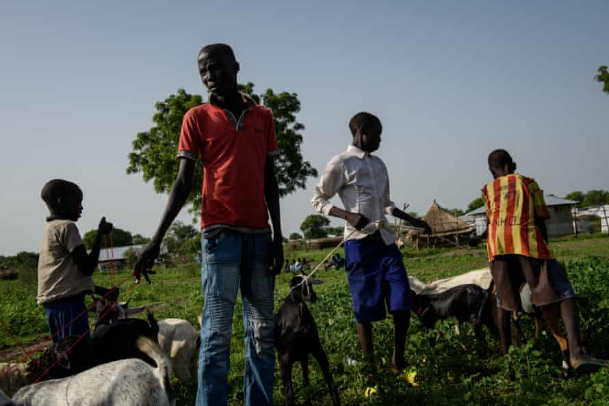 Children receive a distribution of goats.