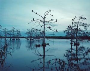 Coastal erosion due to climate change Terrebonne parish, Louisiana, USA 2018