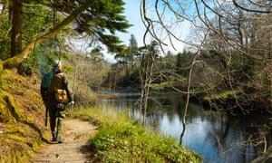 An angler surveys the water at Beat No 1, Ballynahinch, Galway, Ireland.