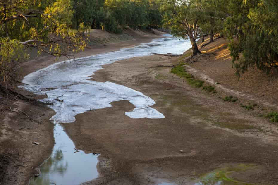Fresh flood waters meet stagnant pools of green water in the Darling River near Louth, in NSW, in February 2020.
