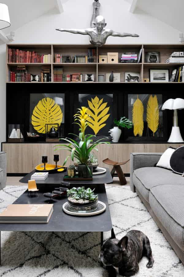 Hoch hinaus: Gepresste Farne zieren das in Weiß und Hellgrau gehaltene Bücherregal im Wohnzimmer.  Es ist ein beliebter Schlafplatz für die französische Bulldogge der Familie.