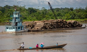 llegally logged timber on Rio Napo at mouth of the Rio Mazan, near Iquitos, heading to Rio Amazon for international export