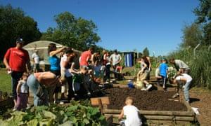 People sow a raised vegetable plot