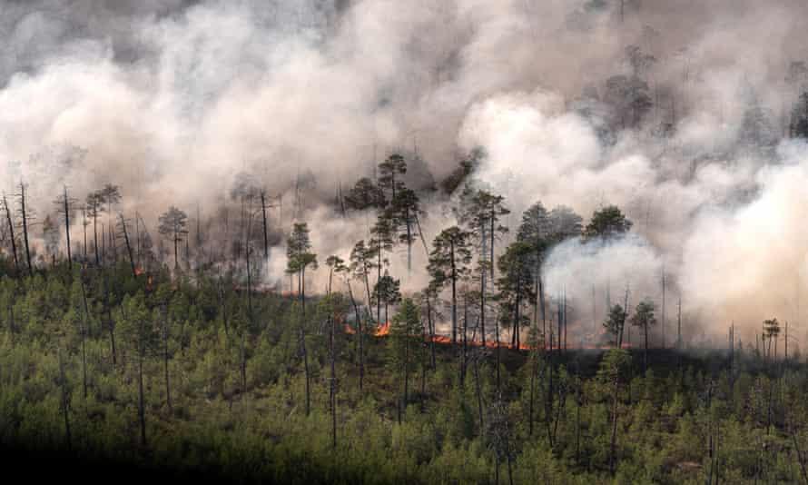 Wildfire, 2020, in the Khanty-Mansi Autonomous Area, western Siberia