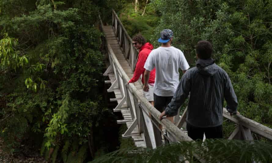 Parque Nacional Pumalín, Sendero Alerce, Patagonia, Chile