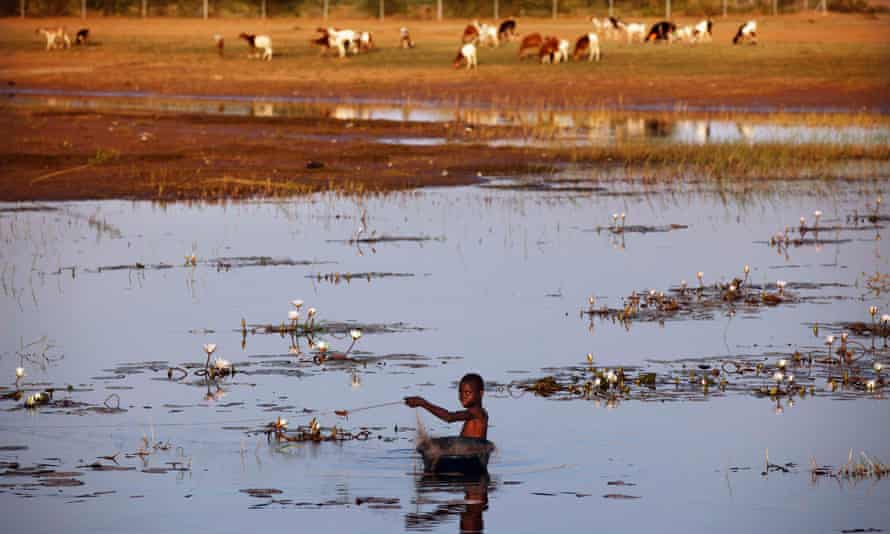 A boy fishes in the Niger river in the Mali region of Gao. Drug pollution levels are higher in much of Latin America, Africa and Asia.