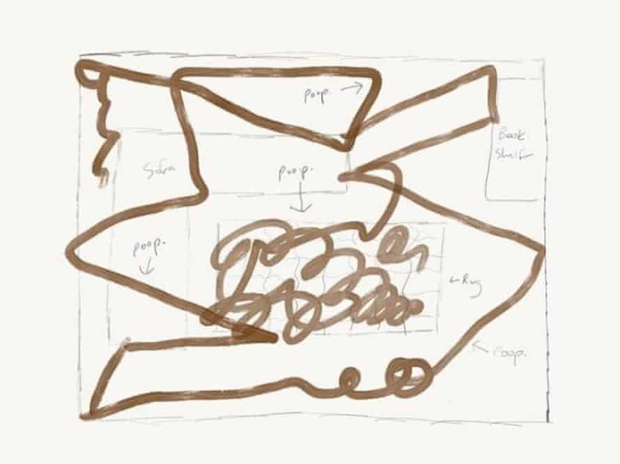 A diagram of the Roomba 'poopocalypse'.