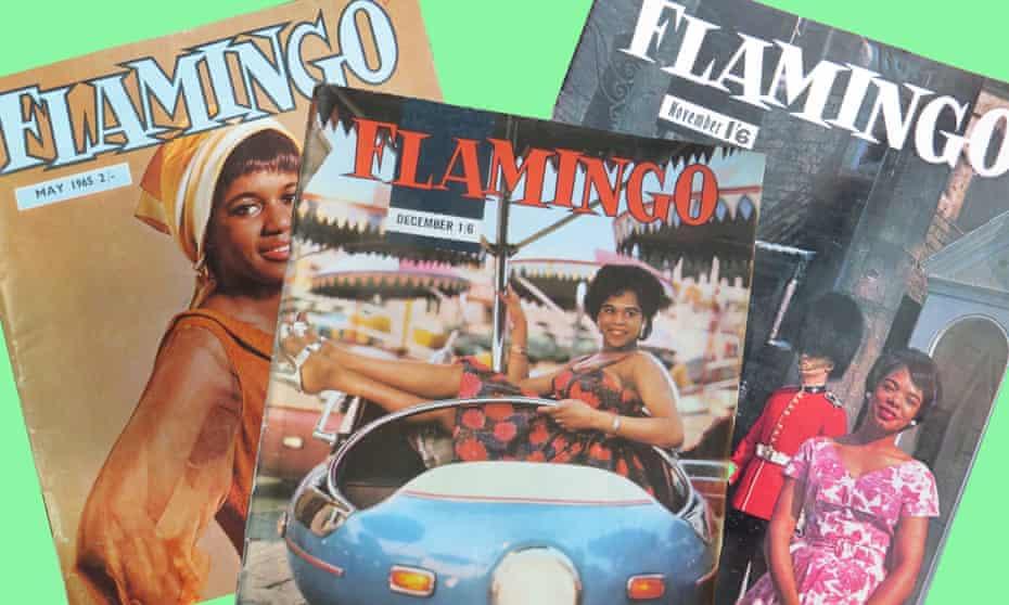 Flamingo magazine.