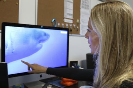 Ocean Ramsey reviews footage of her encounter.