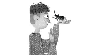 Illustrations by Júlia Sardà from Beetle Boy